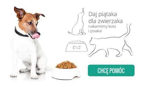 Akcja dla zwierzaka1.jpg